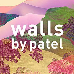 Walls By Patel 3
